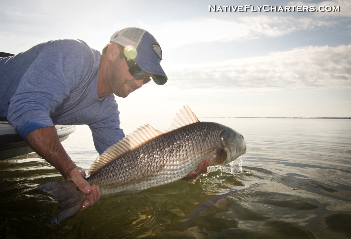 Mosquito Lagoon redfish guide