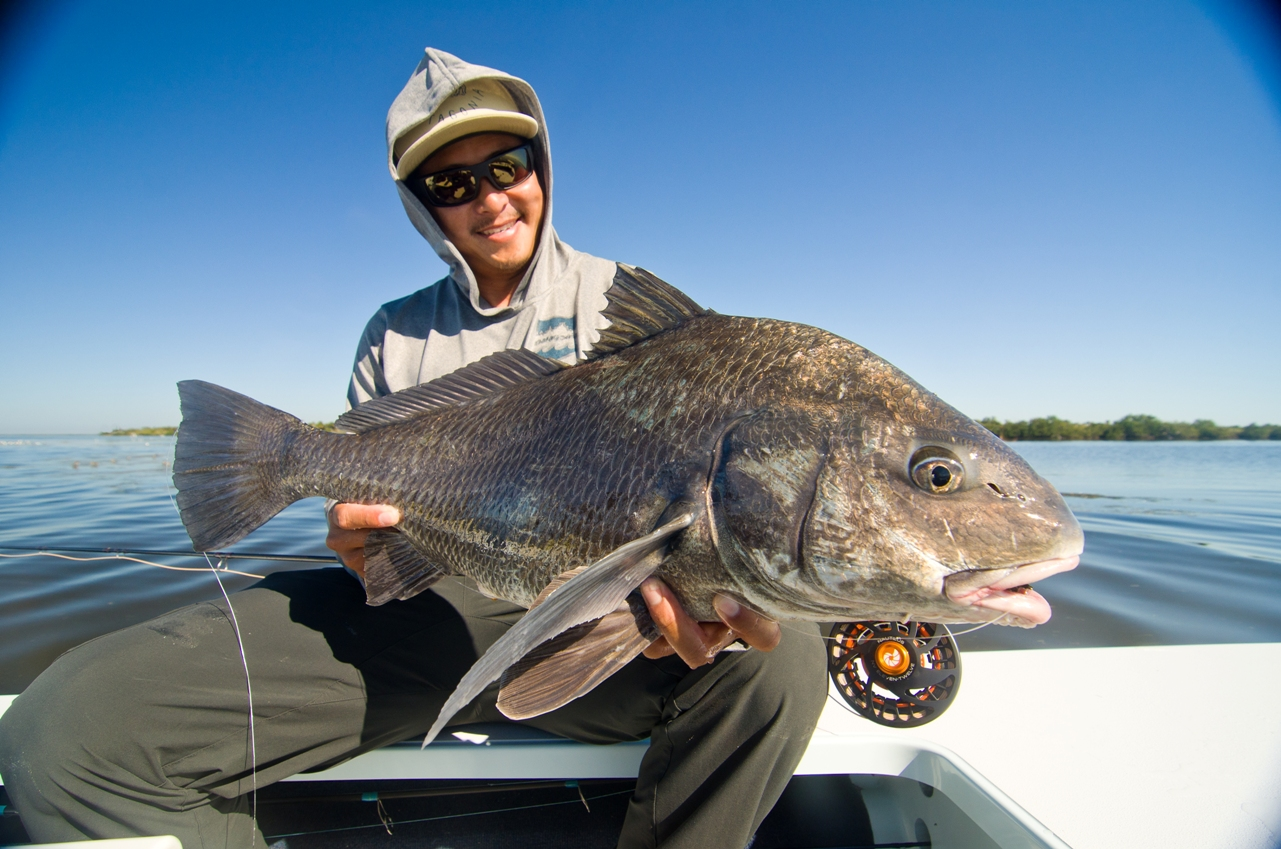 Willy Le Black Drum on fly