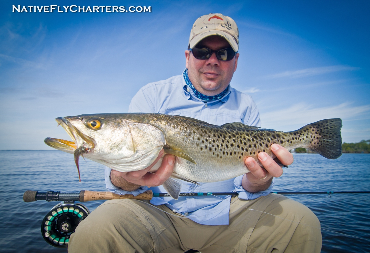 Mosquito Lagoon Sea Trout on fly