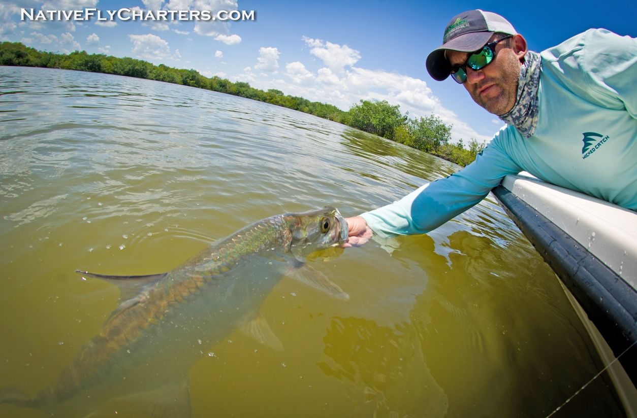 Indian River tarpon on fly
