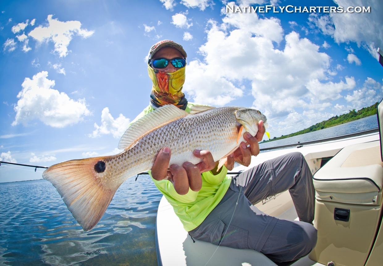 Banana River Redfish