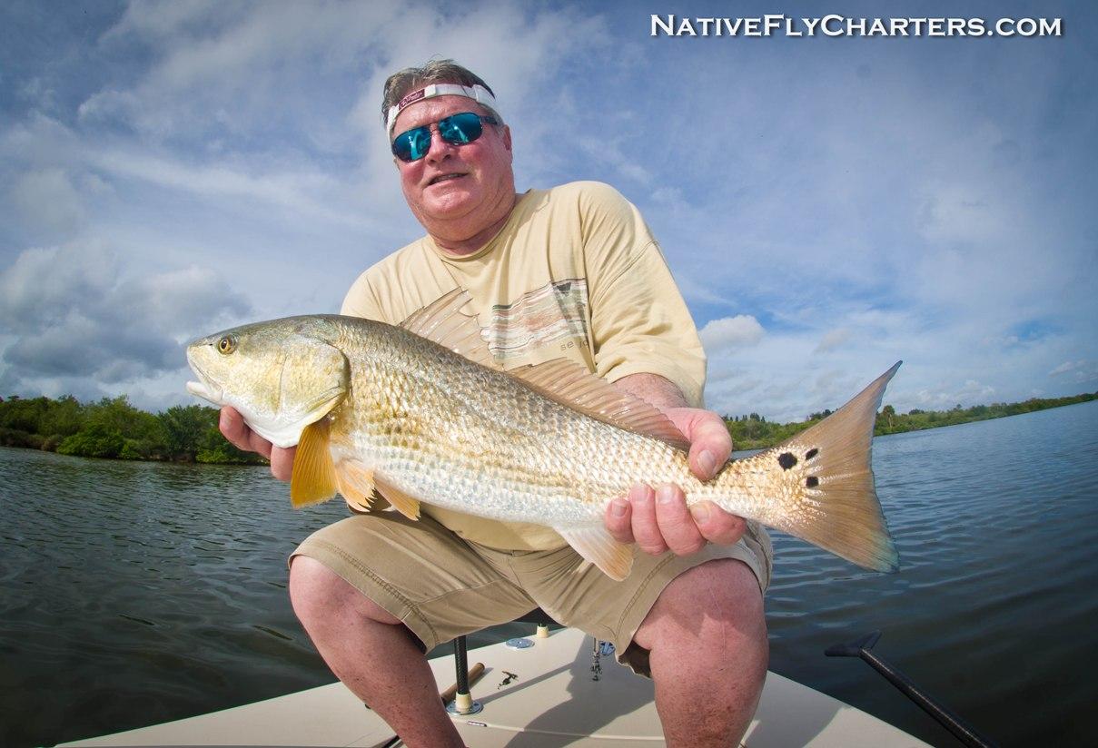 Indian River redfish