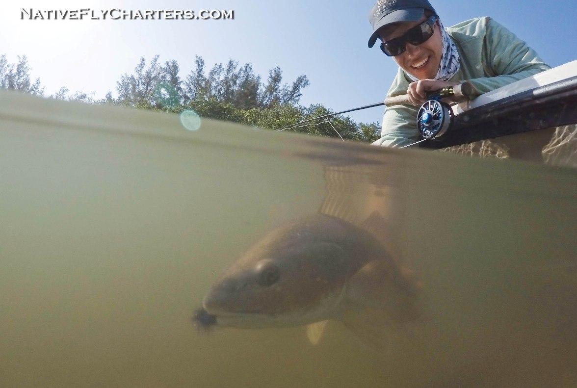 sebastian inlet fly fishing