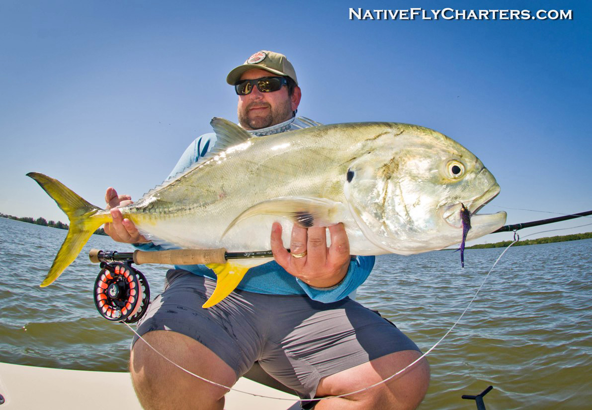 Jack Crevalle on fly
