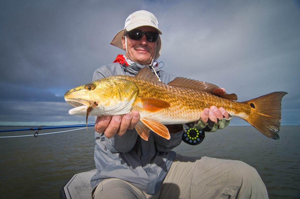 Fly fish Sebastian Inlet
